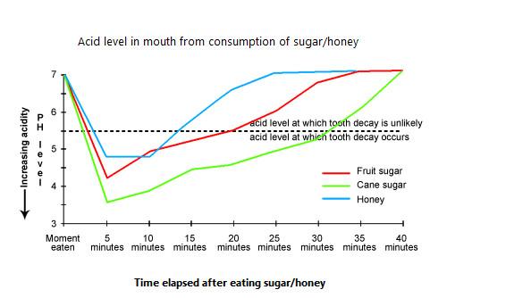 HSC-English-Describing-Graph-and-Chart